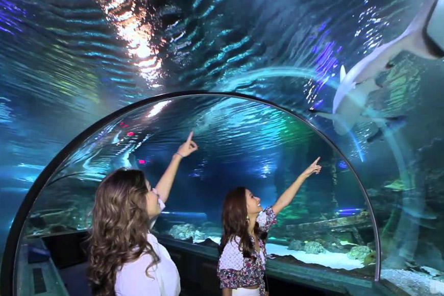 海底世界水族館 Under Water World